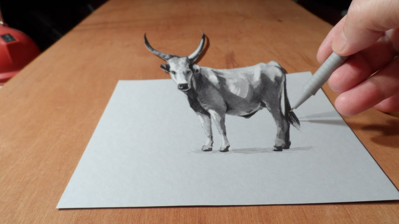Trick Art Drawing 3d Grey Cattle Time Lapse Youtube
