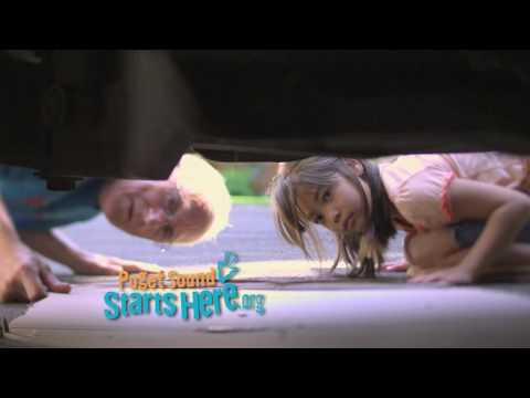 Puget Sound Starts Here car washing television ad, 15 seconds