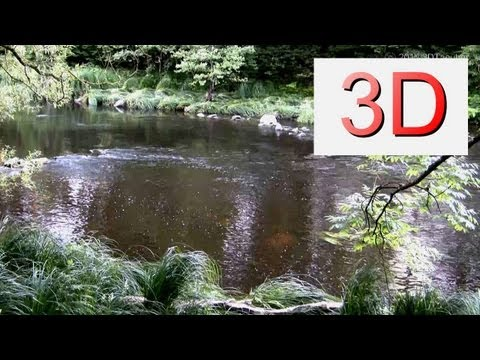 3D Video: River & Forest Relaxation #5