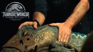 Is Blue Being Enhanced For Her Fight w/The Indoraptor? | Jurassic World 2 Theory