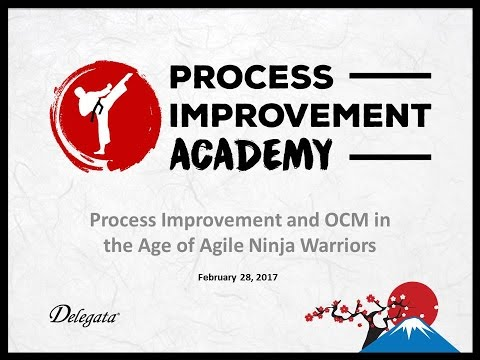 GTI2017 Sn4a: Process Improvement Academy - Delegata