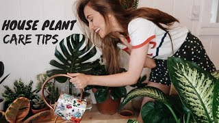 MY HOUSEPLANT COLLECTION (how to not kill your plants)