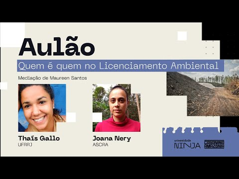 Aulão NINJA Ambiental - Quem é quem no Licenciamento Ambiental