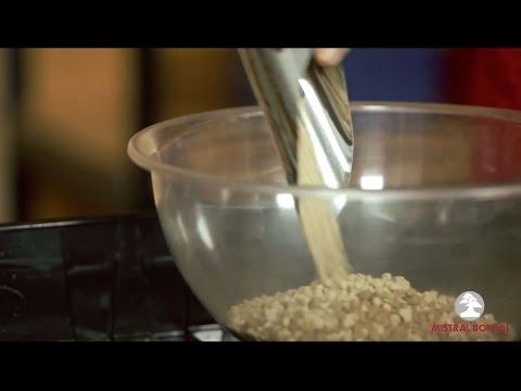 Tierra para trasplantar bonsáis - Mistral Bonsai