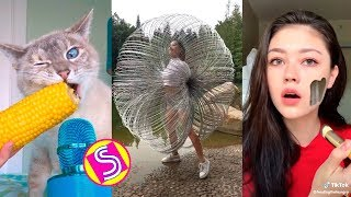Best Funny TikTok Videos Compilation - Comedy&Satisfying TikTok 2019