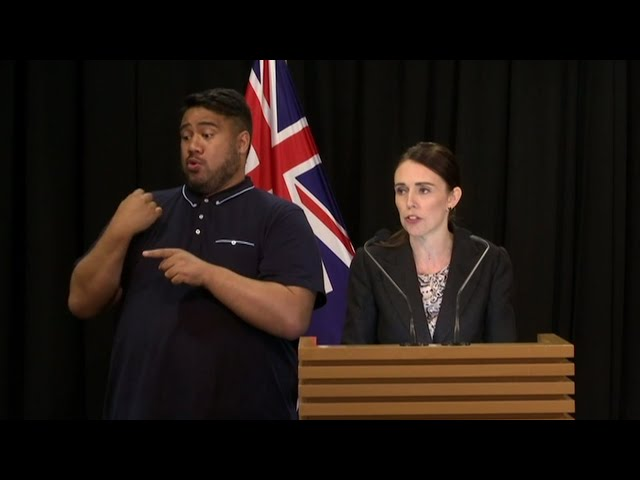 New Zealand bans sales of assault weapons