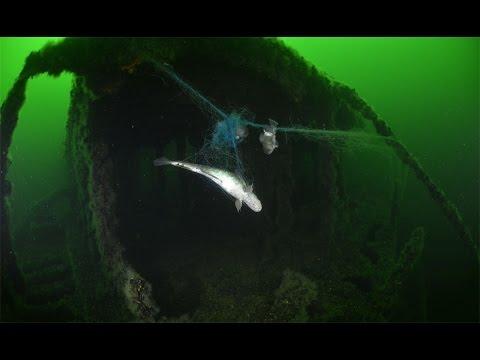 Ghost nets around shipwrecks/Spökgarn vid vrak