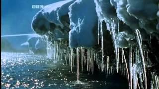 Симфония мира природы – BBC