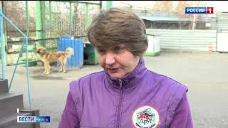 Омские приюты для животных просят о помощи