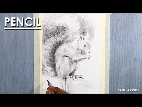 Pencil Drawing : A Composition on Squirrel | How to Shade
