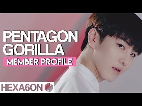 PENTAGON Member Profile // Gorilla