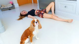 PETS REACT to us FAKING our DEATH! 🐶☠