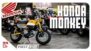 2019 Honda Monkey | First Ride