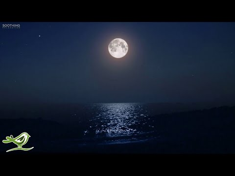 Sleep Music for 8 Hours: Ocean Waves, Fall Asleep Fast, Relaxing Music, Sleeping Music ★138