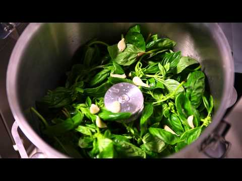 Get Pesto Machine Online