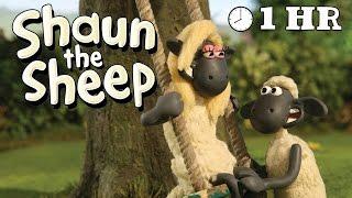 Shaun the Sheep - Season 1 - Episode 31 - 40 [1HOUR]