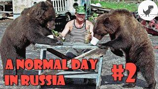 Một ngày bình thường ở nước Nga #2 | A Normal Day in Russia