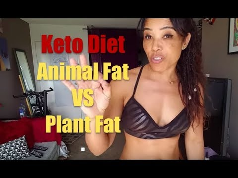 KETO DIET:  Plant fats vs Animal fats. HOW MUCH????????