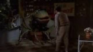 FEED ME SEYMORE - LITTLE SHOP OF HORRORS