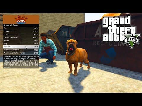 GTA 5 PC Mods - ANIMAL PET SHOP MOD!!! - GTA 5 Pet Mod w/ Wildlife Bodyguard Pets!