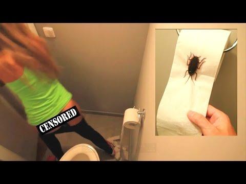 Жестока шега со девојката: И подметна бубашваба во тоалетната хартија