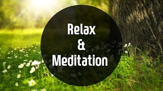 Relax music for 10 min / meditation music / nap music / positive energy