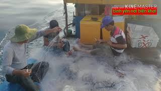 ⛵Chia sẻ của ngư dân về cuộc sống hàng ngày trên biển ! Dân biển quỳnh phương