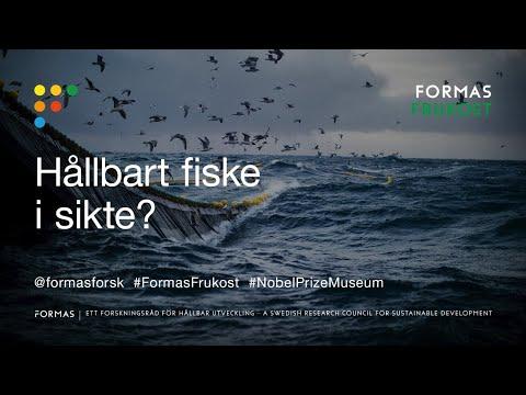 Formas frukost: Hållbart fiske i sikte?