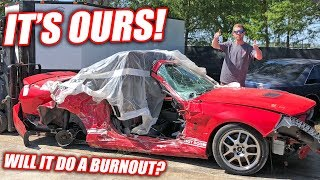 We Bought the Wrecked GT500!! Immediately Attempted a Burnout!