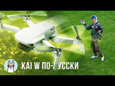 Kai W по-русски: Обзор DJI Mavic Mini photo