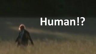 The Walking Dead: Lone Walker Theory