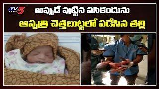 Hyderabad: Newborn found in dustbin at Fever hospital..