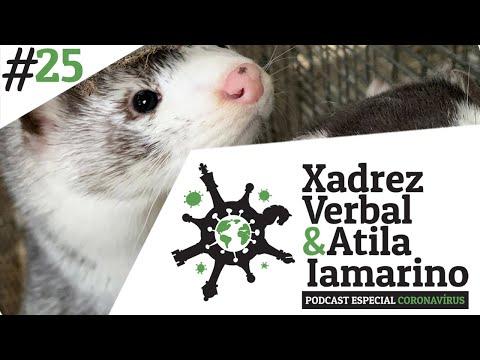 Xadrez Verbal e Atila Iamarino - Especial Coronavírus #25