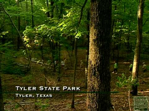 Tyler State Park, Texas Official - YouTube