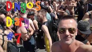 Dingo's Diary #7 - San Francisco (Part 1) and Dore St Fair 2016