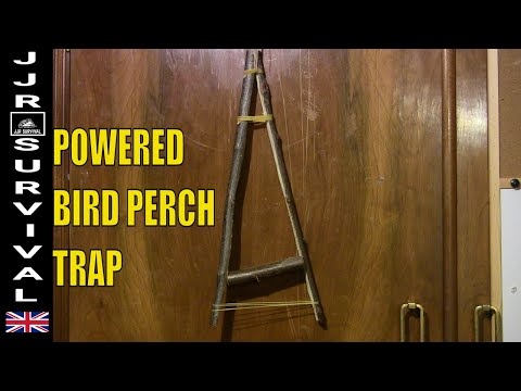BIRD PERCH TRAP
