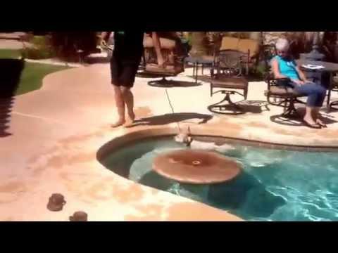 Scottsdale dog training ''k9katelynn'' teaches ''Sam''(boxer-healer mix)  how to swim in Scottsdale,az! See more of Phoenix dog training at k9katelynn.com