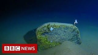 Mariana Trench: Record-breaking journey to the bottom of the ocean - BBC News - YouTube