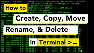 How to make a directory/folder using Mac/Linux Terminal | Create, Copy, Rename, Move and Delete