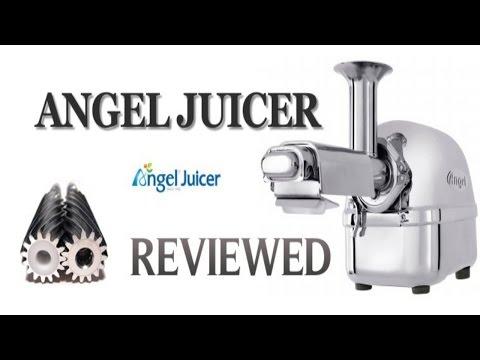 Angel Juicer 5500 Model Twin Gear Juicer
