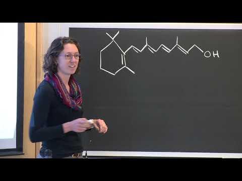 8. Essential Oils Lecture Part 1