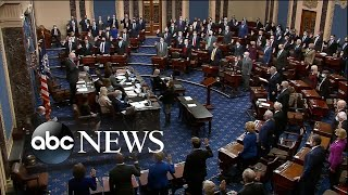 Senators sworn in as jurors in Trump's 2nd impeachment trial | WNT