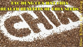 TOP 10 TÁC DỤNG CỦA HẠT CHIA MỸ - TOP 10 PROVEN HEALTH BENEFITS OF CHIA SEEDS