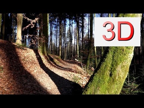3D Video 4K: FEBRUARY FOREST WALK (4K Resolution)
