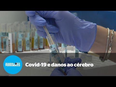 Estudo revela potenciais danos cerebrais decorrentes da Covid-19