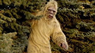 The Untold Truth Of Finding Bigfoot