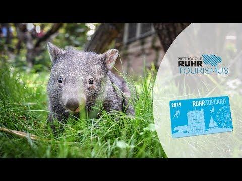 RUHR.TOPCARD 2019 - Die Freizeitkarte fürs Ruhrgebiet