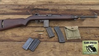 Gun Control Essay Sample