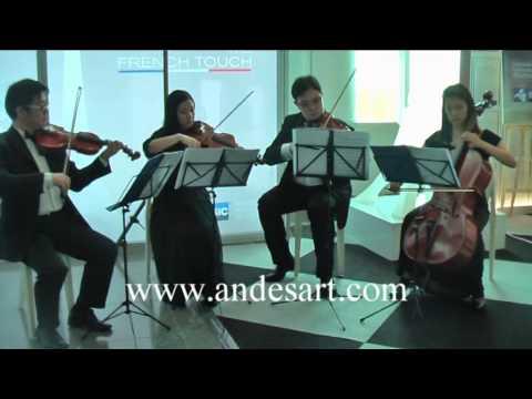 A little night music_Mozart