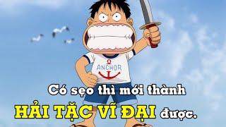 Luffy rạch mặt ăn vạ =)) Nguồn gốc vết sẹo trên mặt của Luffy